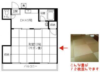 琉球畳12帖のワンルーム